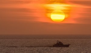 Fishing Boat heading to harbour - LATG Prices